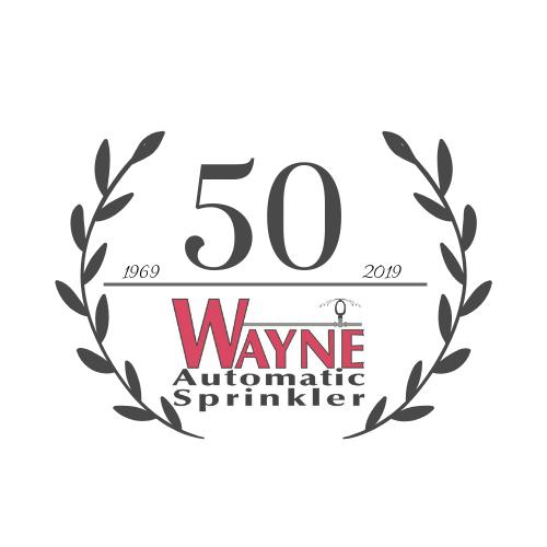 50 (3)